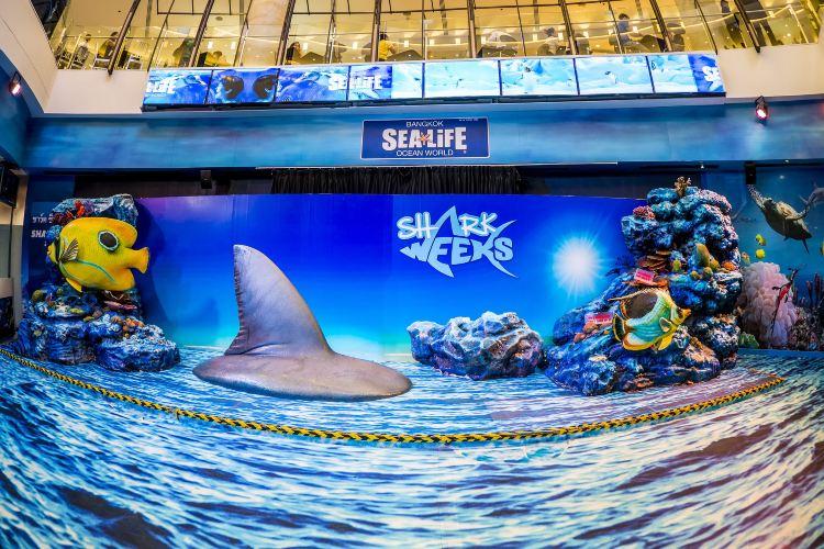 曼谷暹羅海洋世界1