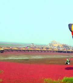 [兴城游记图片] 东戴河的美,红海滩的靓,一起玩个遍!