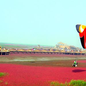 葫芦岛游记图文-东戴河的美,红海滩的靓,一起玩个遍!
