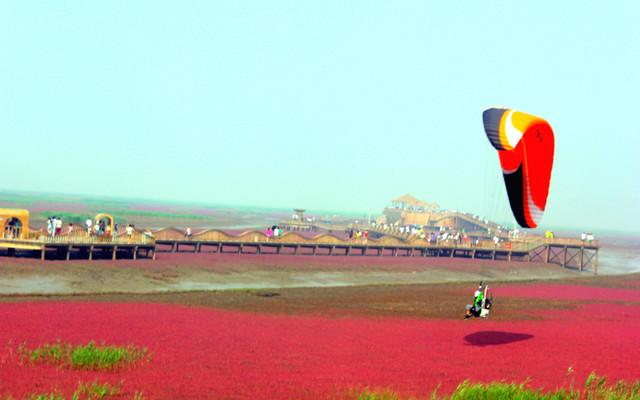 东戴河的美,红海滩的靓,一起玩个遍!