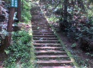 高石梯森林公园旅游景点攻略图