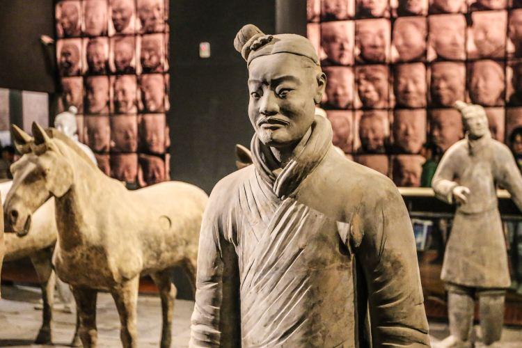 Shaanxi History Museum4