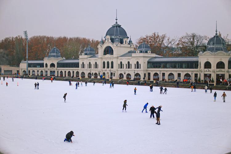 城市公園4