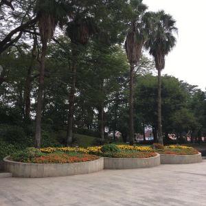 百花村旅游景点攻略图