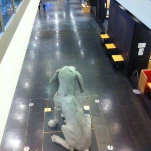 Tacoma Art Museum旅游景点攻略图