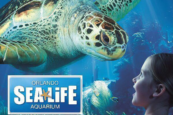 奥兰多-西棕榈滩-劳德代尔堡-迈阿密经典7天游
