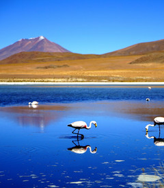 [秘鲁游记图片] 玻利维亚_不一樣的天空之镜