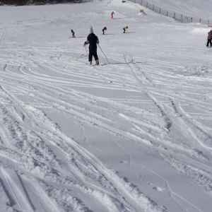 绥芬河国家森林公园滑雪场旅游景点攻略图