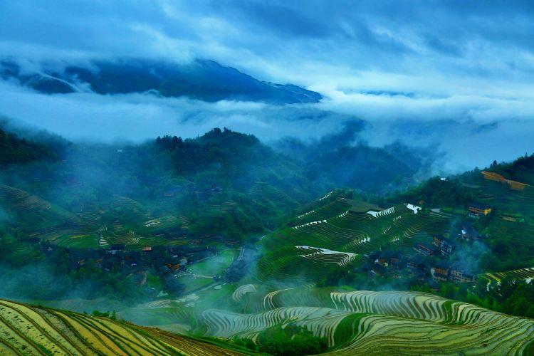 Longji Rice Terrace2