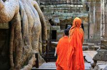 看腻了吴哥,柬埔寨最Local的小众体验全在这儿!