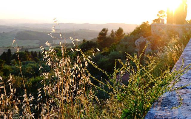 托斯卡纳艳阳下的暮光之城-意大利托斯卡纳深度游