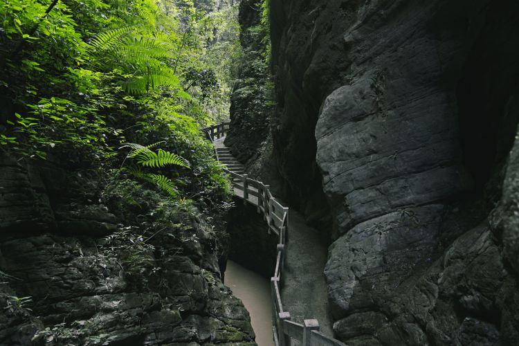 武隆天坑地縫國家地質公園3