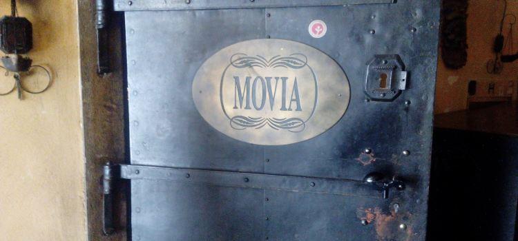 Vinoteka Movia2
