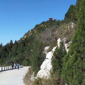府君山公园旅游景点攻略图