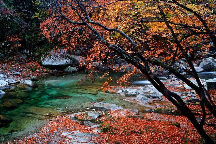 Guangwu Mountain2