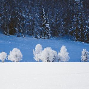 北疆游记图文-#我的2015#禾木晨雾+美丽峰+浪迹喀纳斯湖:零下二十度的生日之旅——遇见阿勒泰的漫长冬季