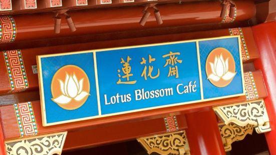 Lotus Blossom Café