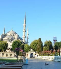 [伊斯坦布尔游记图片] 土耳其自由行之旅