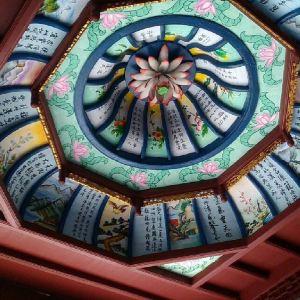横龙寺旅游景点攻略图