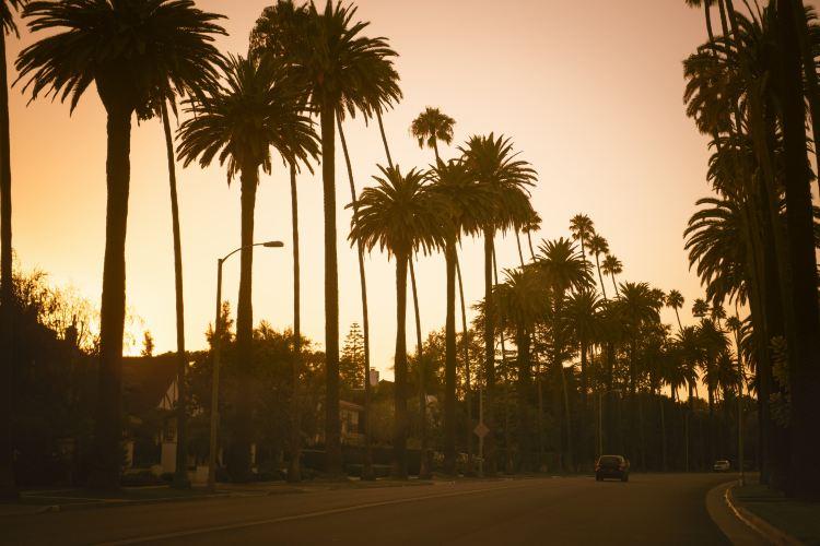Sunset Boulevard2