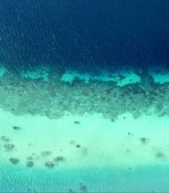 [马尔代夫游记图片] 马尔代夫私享记