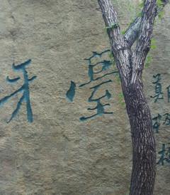 [费县游记图片] 放飞大自然