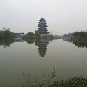 真如禅寺旅游景点攻略图