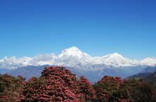 风景不输瑞士,消费低过东南亚,落地签说走就走,一起来趟心灵之旅!