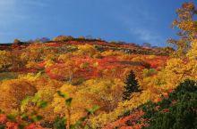 北海道秋季必做之事