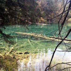 仙女池旅游景点攻略图