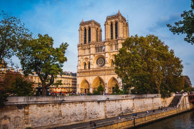 Cathédrale Notre-Dame de Paris1