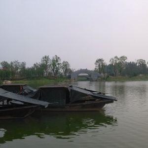 颍上县江心洲滨河公园旅游景点攻略图