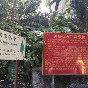 万佛寺旅游景点攻略图