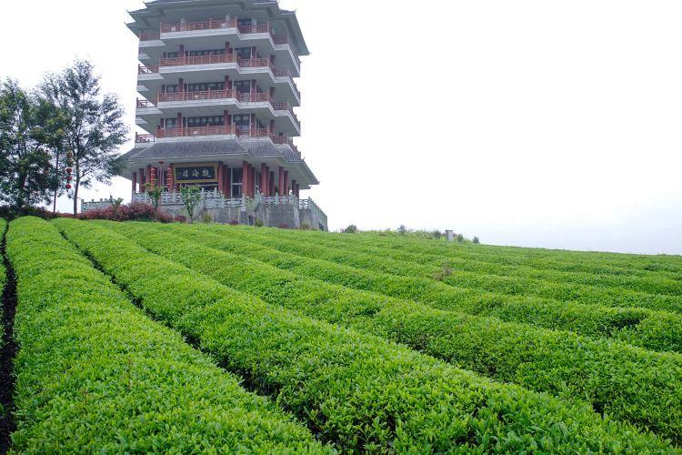 Chahai Scenic Area2
