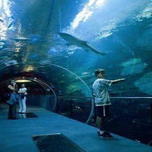 海洋博物馆旅游景点攻略图
