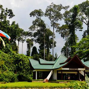 西必洛游记图文-【西必洛】热带雨林中的人缘庇护所(图组54P)