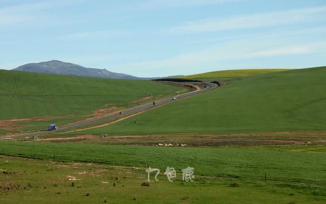 拥抱南非,拥抱彩虹(三)奔跑在狂野克鲁格