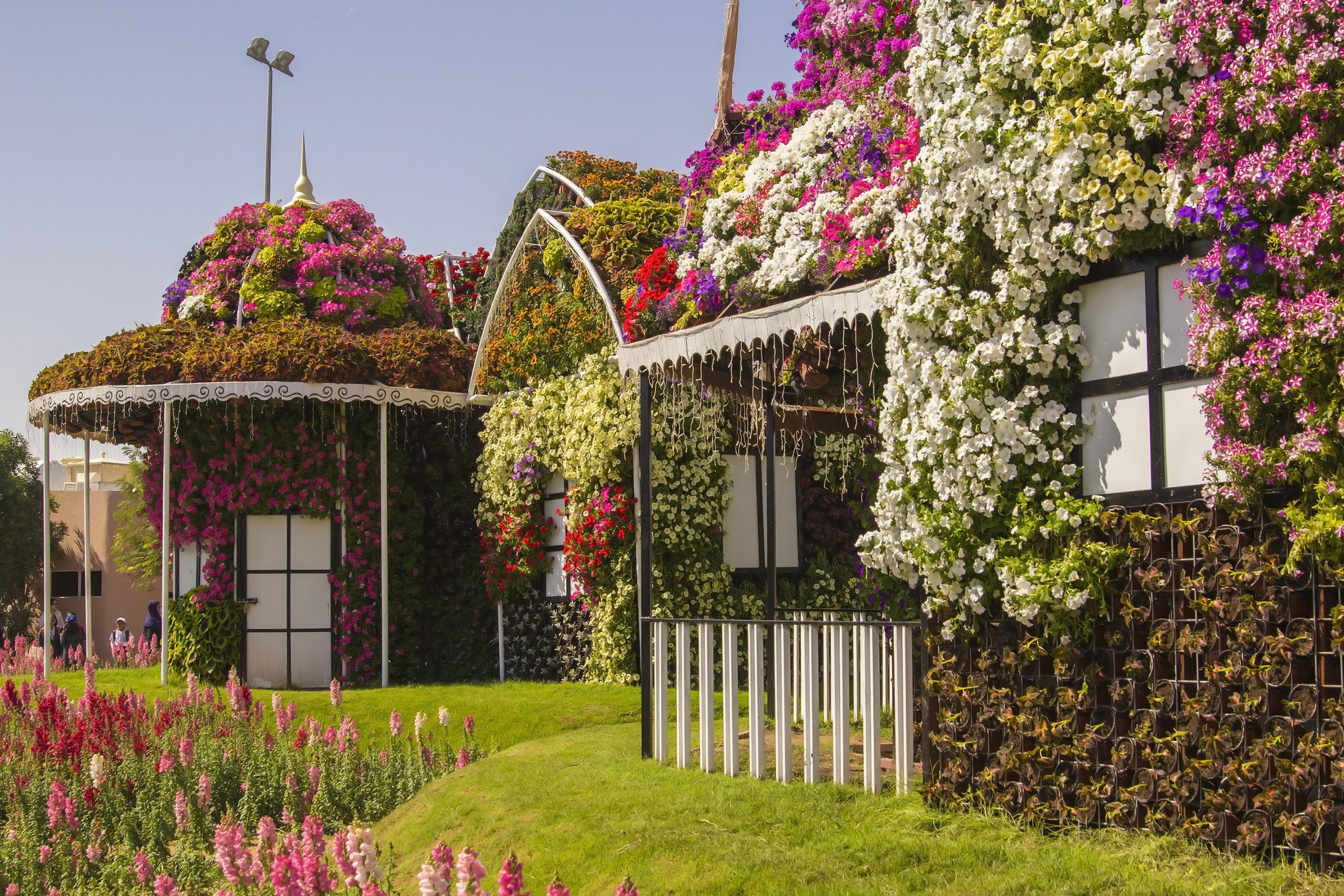奇迹花园旅游景点图片