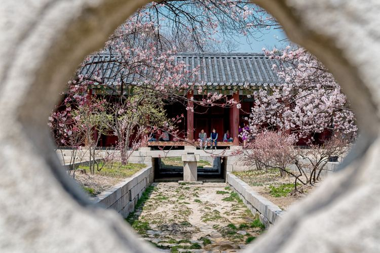 Changgyeonggung Palace2