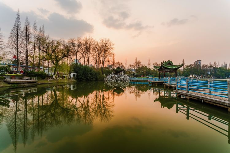 鏡湖公園2