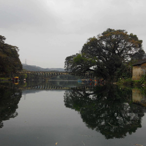 鹿寨游记图文-免费原生态旅游的好地方:广西柳州鹿寨中渡古镇