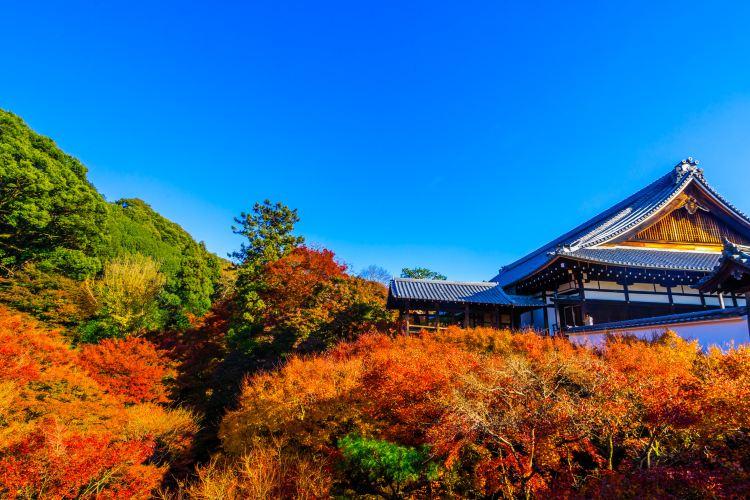 Tofukuji Temple4