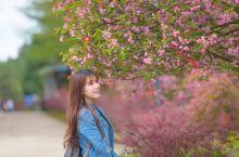 在最美的年华里,我用一朵花开的时光来等你:余姚
