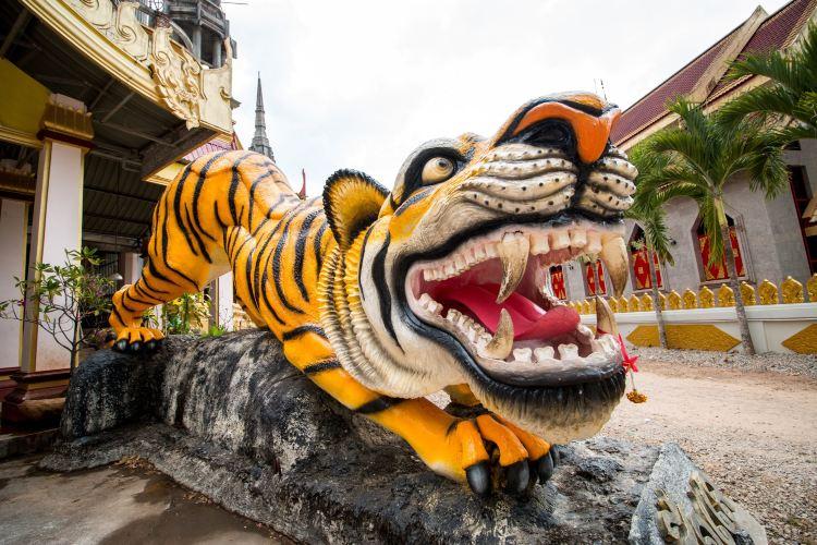 Tiger Cave Temple4