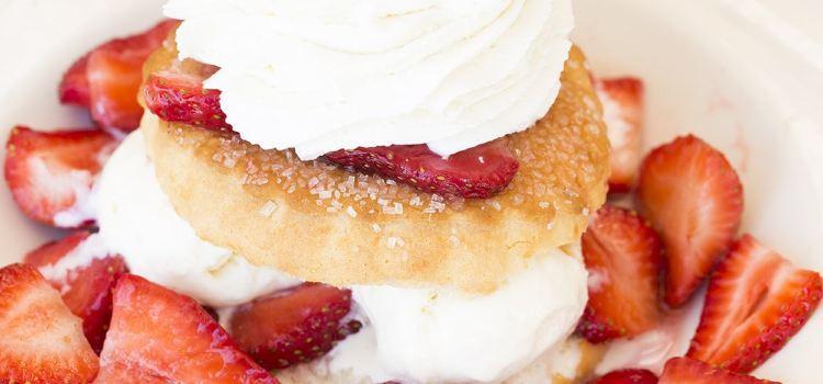 The Cheesecake Factory-Boston1