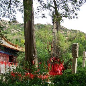 万寿寺旅游景点攻略图