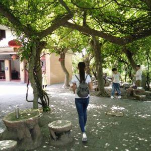 黄大仙祖宫旅游景点攻略图