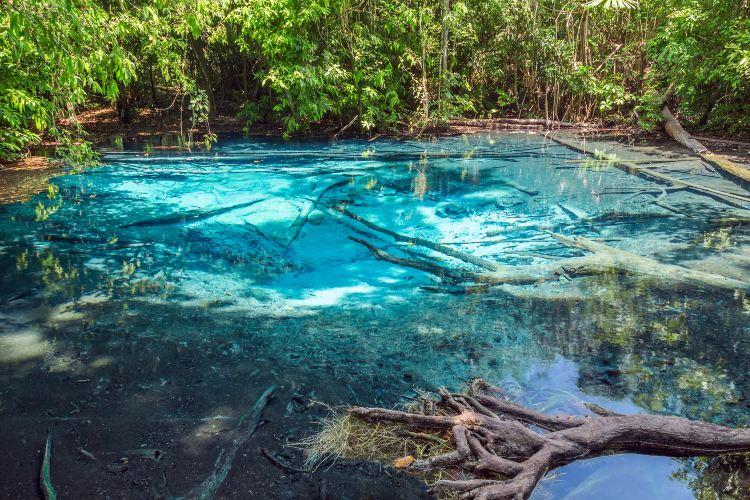 Emerald Pool1