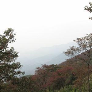 石灶风景区旅游景点攻略图