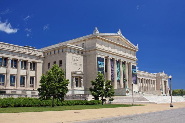 菲爾德博物館3